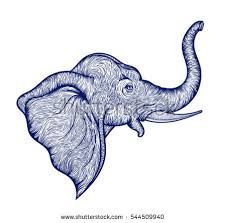 elephant head outline stock images royalty free images u0026 vectors