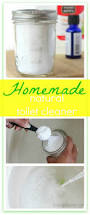 Housekeeping Tips by 439 Best Good Clean Fun Images On Pinterest Cleaning Hacks