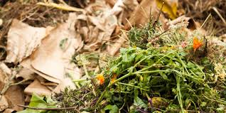 how to make a compost heap 10 top tips eden project cornwall