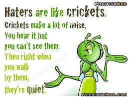 Crickets Meme - haters are like crickets