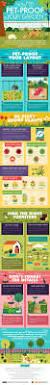 best 25 dog friendly backyard ideas on pinterest build a dog
