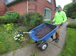 What Kind Of Mulch For Vegetable Garden by Is Colored Or Dyed Mulch Bad For My Plants Angie U0027s List