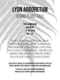 native hawaiian plants for sale lyon spring plant sale harold l lyon arboretum