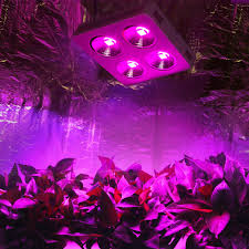 led grow light usa newest cob full spectrum led grow light 800w diy high power for