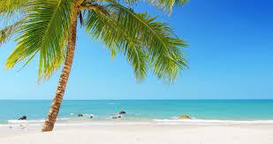 tropical island vacation idyllic background