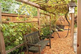 garden vine support home design ideas and pictures