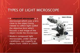 compound light microscope uses light microscope vs electron microscope