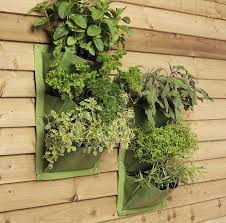 vertical garden planters by freshly forked notonthehighstreet