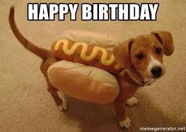 Orange Dog Meme - happy birthday hot dog weiner dog meme generator