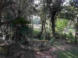 land with house for sale in katugastota kandy land for sale in