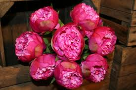 artificial peonies hot pink artificial peony heavenlyhomesandgardens co uk