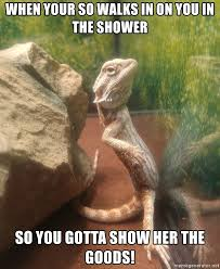 Lizard Meme - when your so walks in on you in the shower so you gotta show her