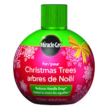 miracle gro for christmas trees lowe u0027s canada