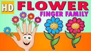 finger family for children flower cartoon funny flower finger