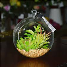 artificial succulent plants in hanging glass terrarium id 9743080