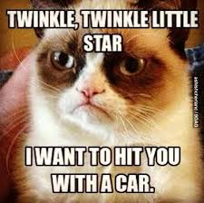 Grumpy Cat Meme - twinkle twinkle little star grumpy cat meme