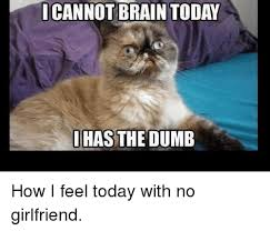 How I Feel Meme - i cannot brain today has the dumb how i feel today with no