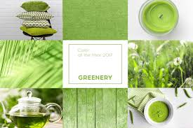 colour of 2017 greenery how to use pantone u0027s colour of the year aym design