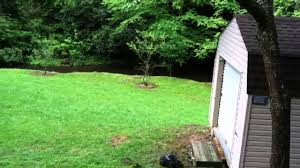 cabin for rent pigeon roost north carolina youtube