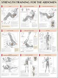 strength training for the abdomen chart learn some effective