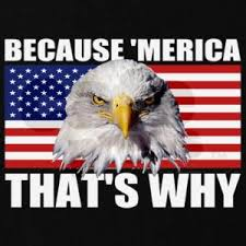 Merica Meme - memes i can reference or use anytime merica where is rusnivek