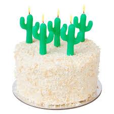 sunny life cactus cake candles ishine365 u2013 ishine365 buy
