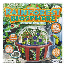 rainforest biosphere terrarium at growing tree toys