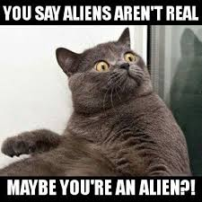 Cat Alien Meme - best of cat alien meme the world s most recently posted photos of