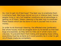 boric acid for bed bugs how to get rid of bed bugs youtube