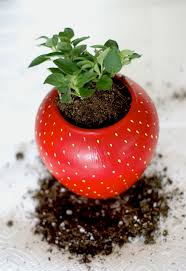 herb planter diy diy painted strawberry herb planter u2014 a charming project