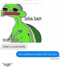 Turtle Meme - maha hart bole here s a cute turtle you continue to play with my