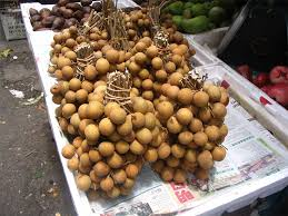 fruit similar to lychee longan nutrition facts and health benefits hb times