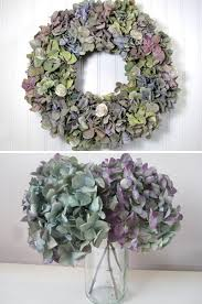 dried hydrangeas how to naturally hydrangeas hydrangea wreaths and gardens