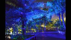 landscape lighting design software with outdoor home and 5 led