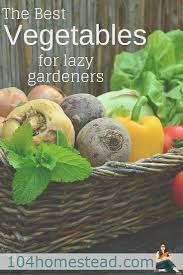 433 best home grown images on pinterest gardening plants and