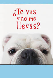 thanksgiving ecards funny leaving without me funny spanish language goodbye card greeting