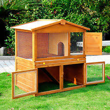 Ferret Hutches And Runs Guinea Pig Wooden Hutches With Run Ebay