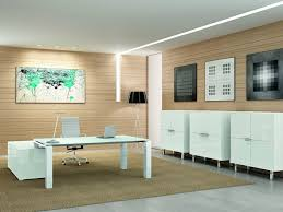 functional executive evo stylish and functional executive