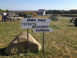 apple orchard pumpkin patch corn maze petting zoo it u0027s all