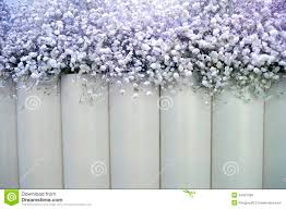 wedding backdrop flowers white flowers backdrop royalty free stock images image 34437469