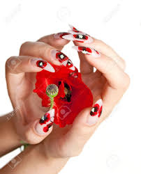 two female hands with beautiful nails over a red flower on a