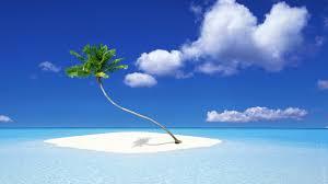 palm tree island 6925837