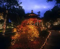 Quail Botanical Gardens Encinitas California Garden Of Lights At San Diego Botanic Garden In Encinitas
