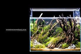 nano aquascape favourites nano tank by aqua color the amount of details that he