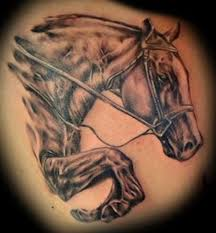 horse tattoo designs and meanings tattoo ideas gallery amp designs