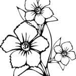 flower coloring pages free printable coloring pages kids collection