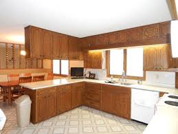 Ideas To Update Kitchen Cabinets Need Ideas For 1970 U0027s Oak Kitchen Cabinet Update Updating Kitchen