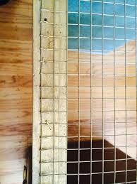 Chicken Wire Chandelier Diy Falling For Florals U2014 Established California