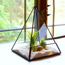 best small glass terrarium products on wanelo
