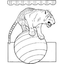 20 free printable tiger coloring pages